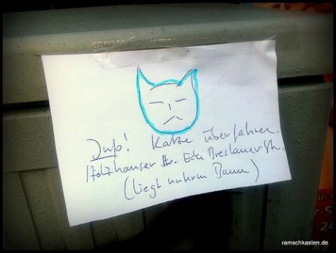 Info: Katze überfahren. Holzhäuser Ecke Breslauer. (Liegt unterm Baum)