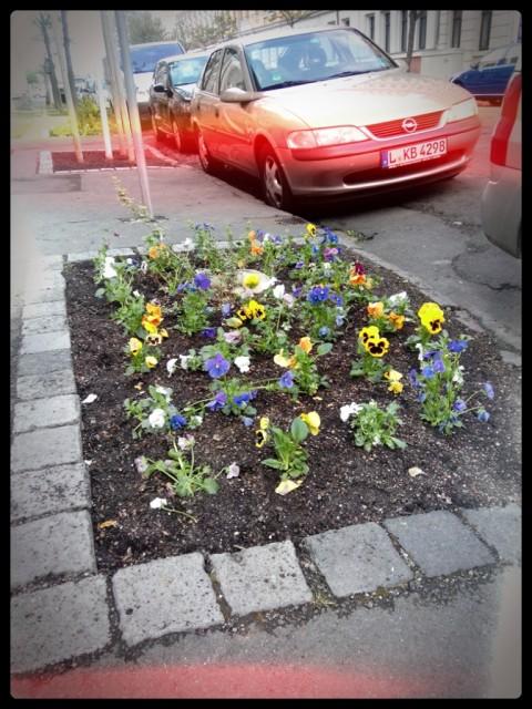 Guerilla Gardening St.Ötteritz